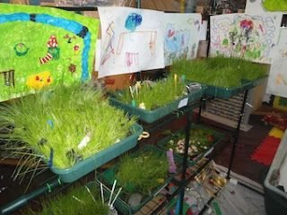 Guide for making indoor gardens with young children